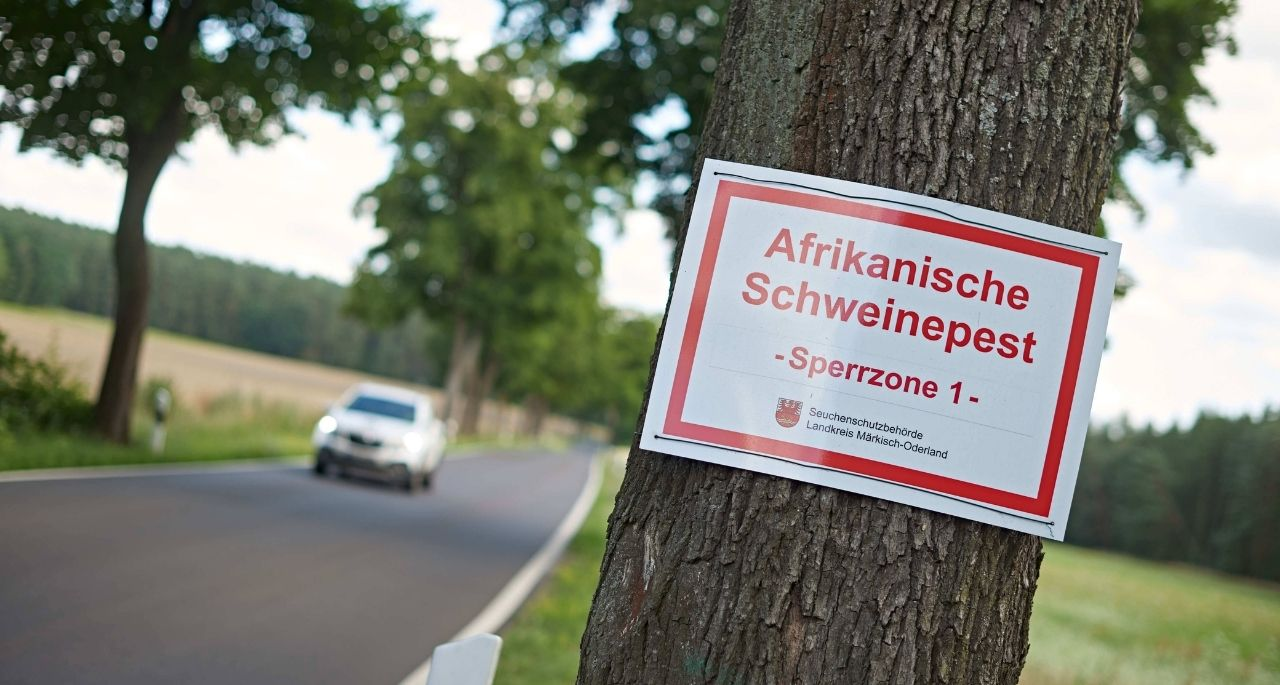 https://www.bioland.de/fileadmin/user_upload/Verbraucher/Blog/Politik_und_Gesellschaft/Afrikanische_Schweinepest_contra_Freilandhaltung/Warnschild_Afrikanische_Schweinepest_Imago.jpg