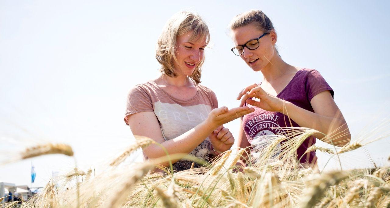 https://www.bioland.de/fileadmin/user_upload/Verbraucher/Blog/Politik_und_Gesellschaft/Bundestagswahl_2021/Header_OEko_Forschung_Wissenschaft_Foerderung_Bioland.jpg
